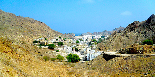 old-muscat