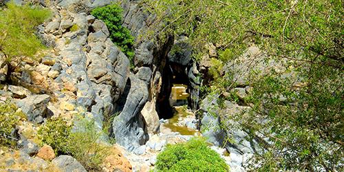 snake-canyon